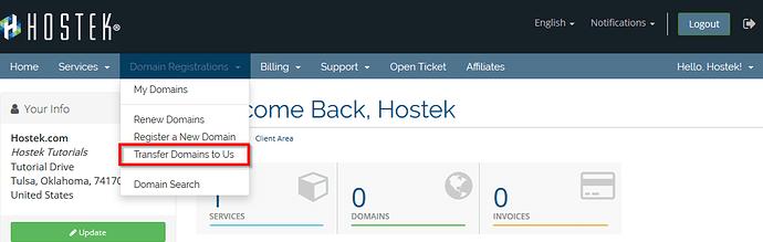 Domain_Registration_Transfer_Domain_Domain_Registrations.png