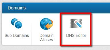 WCP DNS Editor