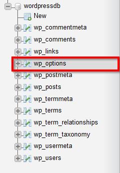 Application_WordPress_wp_options