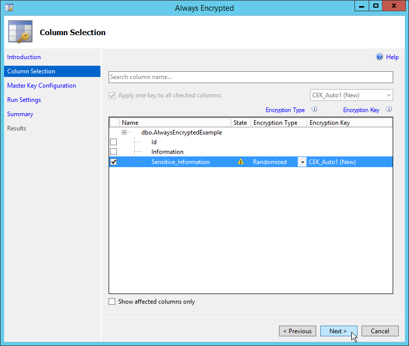 SQL Server Always Encrypted Columns - Microsoft SQL - Hostek Community